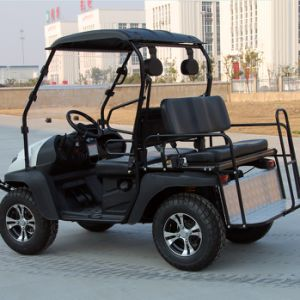 2017 New Model Gasoline Cart (200cc gas powered cart) pictures & photos