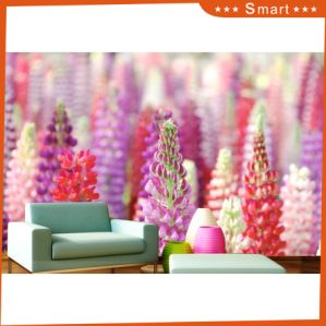 Colorful Flower Design for Home Decoration Oil Painting pictures & photos