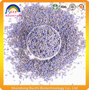 Chinese Health Herbal Tea Lavender Tea pictures & photos