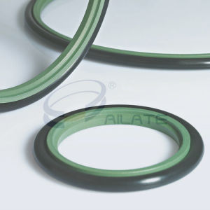 BSJ Rod Seal pictures & photos