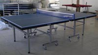 Professional Table Tennis Tables (TE-08B) pictures & photos