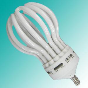 Lotus Energy Saving Lamp ((Φ 19mm)