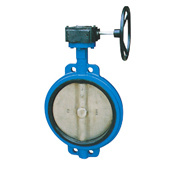 API/JIS/GB/DIN Wcb Worm Gear Wafer Type Centric Butterfly Valve