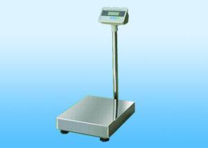 Digital Platform Scale (TCS-B)
