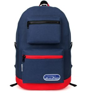 Cheap Price Laptop Backpack/Laptop Bag pictures & photos