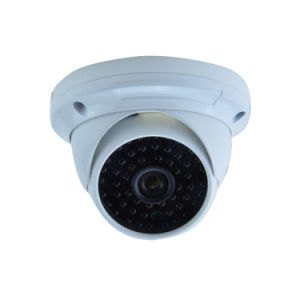 High Resolution Outdoor Small Dome IP Camera