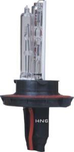 Xenon HID Bulb (9004--1)