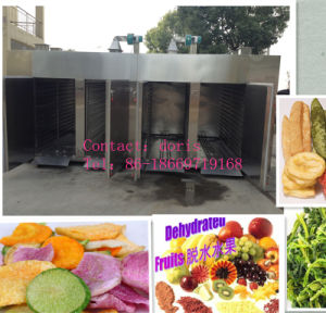 Stainless Steel Fruit Drying Machine/Industrial Fruit Dryer/Vegetable Drying Machine pictures & photos
