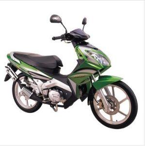 Cub/Motorcycle/Motorbike (SP110-12N)