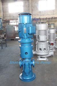 Vertical Double Screw Pump pictures & photos