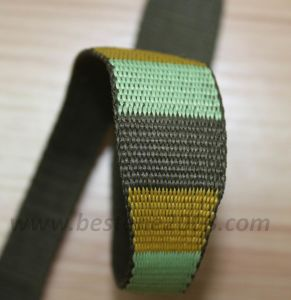 Jacquard Variable Webbing#1401-114 pictures & photos