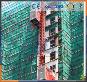 China Electrical Hoist Crane 500kg for Sale Chain Hoist pictures & photos