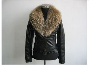 Ladies′ Jacket