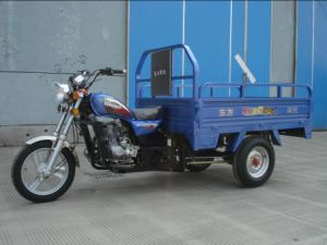 150 CC Three Wheel Motorcycle (DF150ZH-C2)