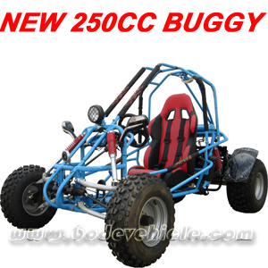 New 250CC Go Cart. Buggy (MC-413) pictures & photos