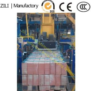 Semi-Automatic Brick Packing Production Line pictures & photos
