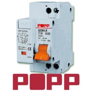 Residual Current Circuit Breaker With Over Current Protection(DZ30LE)