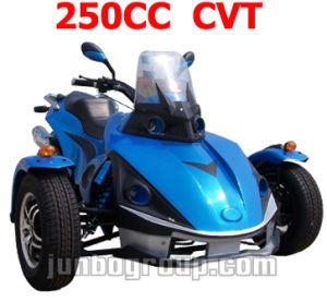 Tricycle EEC 250CC ATV, EEC Quad 250CC, EEC ATV (DR789)