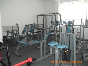 Ce Certificated Multi Jungle Machine (SS04) pictures & photos