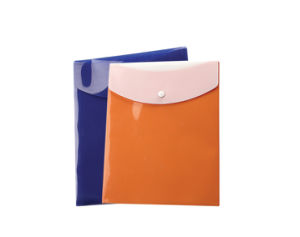 File Folder (FY-09) PP File Folder, File Organizer, Document Folder