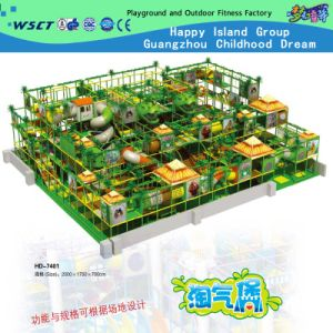 New Style Indoor Playground for Amusement Park (HD-7401) pictures & photos