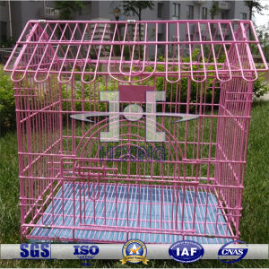 New Design Metal Bird Cage