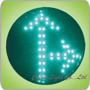 Arrow Aspect LED Traffic Light (DXFD300-5-5-2C)
