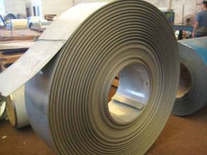 Stainless Steel Sheet Plate/Coil pictures & photos