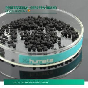 Humic Acid From Leonardite/ Lignite pictures & photos