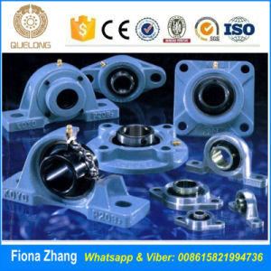 Main Bearing Pillow Block Bearings Bearing for Sale