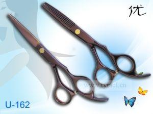 Hair Scissor Titanium Coated U-162 (Purple color)