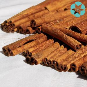 Cinnamon Bark Extract / Cinnamomum Cassia Extract / Polyphenols pictures & photos