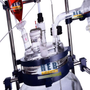 Jacketed Glass Reactor Heb-80L pictures & photos