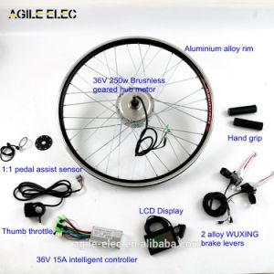 36V 250W Geared Electric Bicycle Motor Kit with Rack Type Lithium Battery pictures & photos