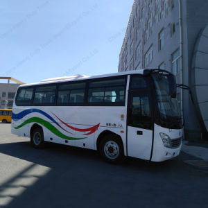 8m 35 Seaters Bus Luxury Coach Bus pictures & photos