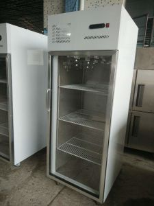 2-Door Side by Side Stainless Steel Commercial Refrigerator for Restaurant Freezer pictures & photos