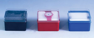 Small Square Transparent Cover Variety of Color Within The Sponge Plastic Box pictures & photos