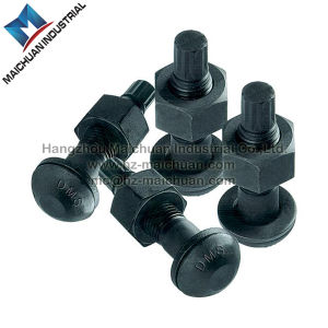 High Tensile Strength Bolt with Nut and Washer of Torshear Type Grade 10.9 pictures & photos