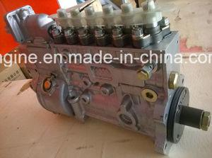 Cummins Engine Injection Pump 4937514 3908568