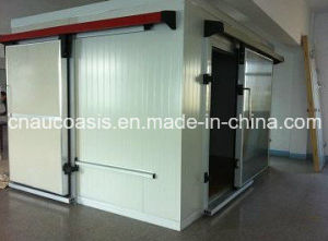 Cold Storage Room for Meat and Fish Indoor/Outdoor Use pictures & photos
