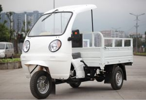 Hot Selling 3 Wheeled Cargo Tricycle pictures & photos