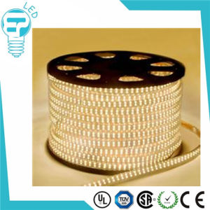 Waterproof IP65 SMD5050 LED Chip 220V LED Strip pictures & photos