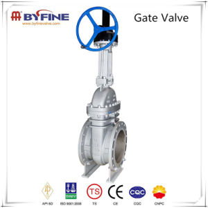Casting Carbon Steel API Valve with API 6D Certificate pictures & photos