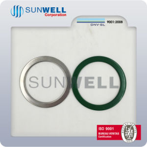 Spiral Wound Gaskes with Inner and Outer Ring Swg Gaskets pictures & photos