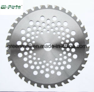 Tct Blade for Brush Cutter (GP050.01.012) pictures & photos