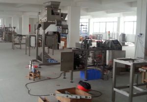 Zipper Bag Packaging Machine pictures & photos
