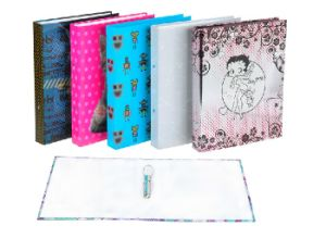Recycled Kraft Lever Arch File Folder / Paper File Folder pictures & photos
