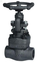 Forged Globe Valve, BS5352, Class: 150, 300, 600, 900, 1500, 2500