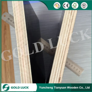 18mm Poplar Core Brown Film Faced Plywood pictures & photos
