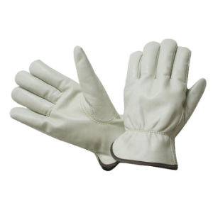 Ab Grade Cowhide Driving Working Gloves pictures & photos